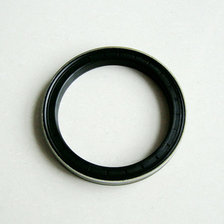 Wholesale Marketing NBR Oil Seal/ Wheel Hub Oil Seal/Auto Oil Seal