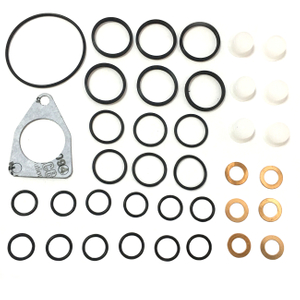 Fuel Pump Repair Kits 800857