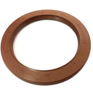 Oil Seal DGS 100*130*13/01
