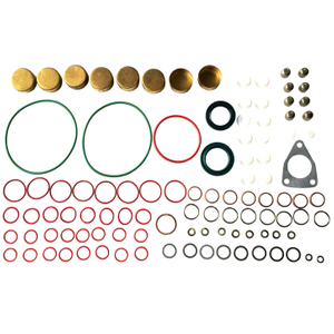 Diesel Pump Repair Kits 2417010022